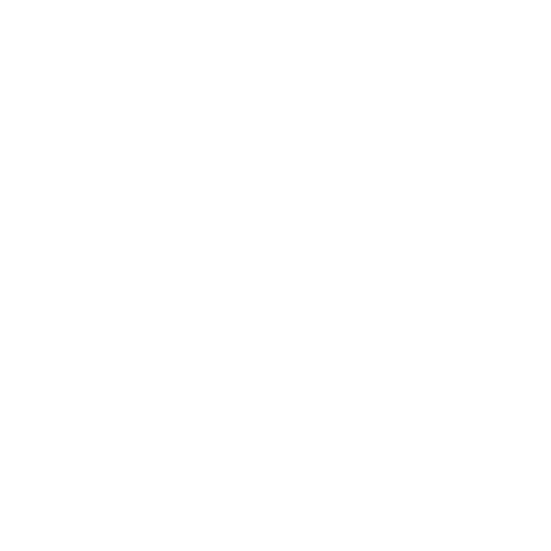 A Customs Brokerage logo